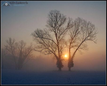 Fotografia alba dopo la nevicata