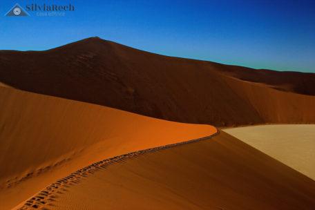 Fotografia le linee del deserto